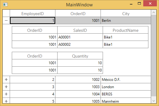 WPF DataGrid Master-Details View | Hierarchical DataGrid | Syncfusion